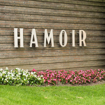 angle avenue Hamoir chaussée de Waterloo résidence services hamoir uccle seniorie