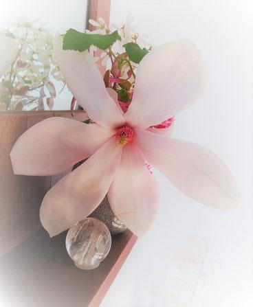 Frische Blüten in meinem Praxisraum - ein schönes Geschenk an meine Gäste und mich!