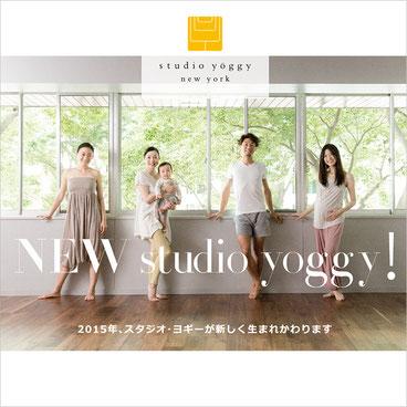 「studio yoggy」リーフレット 表紙