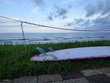 朝から恒例定例会、モモチョイぐらいの波でした。