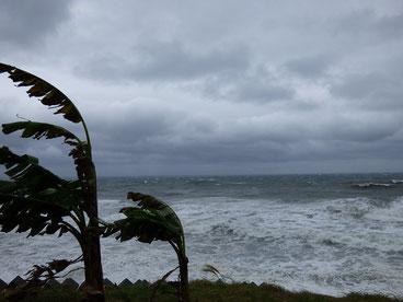 枕崎に上陸しましたが、勢力を保ったままの割にそこまで風も強くなく、ほっとしています。みなさんの地域はどうでしたか??