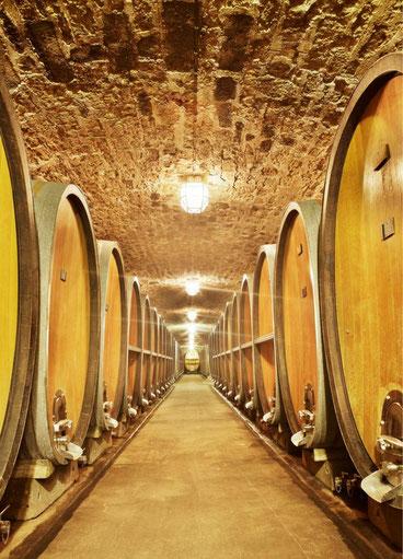 Weinfässer im Keller
