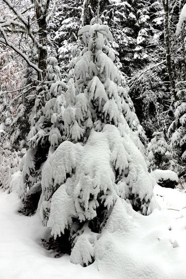 30 octobre 2018 - Belledonne sous les premières neiges - © Guillaume D