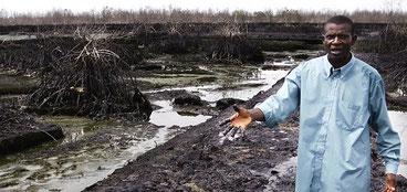 Inquinamento da petrolio nel Delta del Niger. (Courtesy Amnesty International)