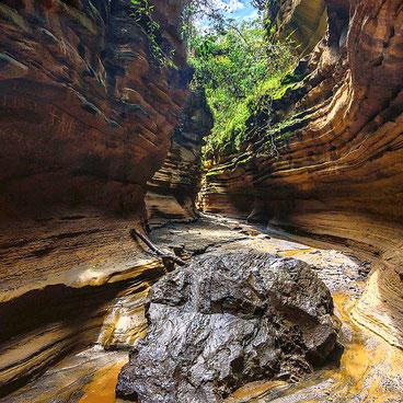 Gola Inferiore (Ol Njorowa Gorge). Parco Nazionale di Hell's Gate
