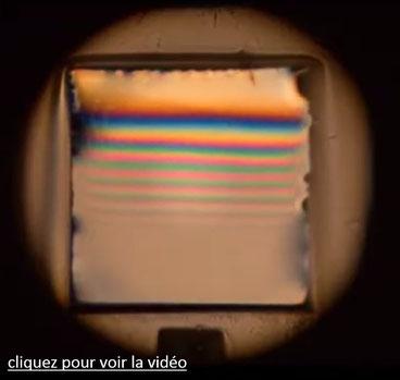 Couleurs interférentielles sur un film de savon vertical ; franges d'égale épaisseur