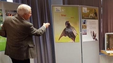 """Ausstellungseröffnung """"Star und Stichling"""", Foto: NaZ Rappenwört"""
