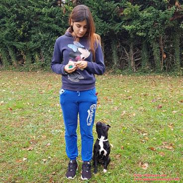 Pensione Cani Lucca