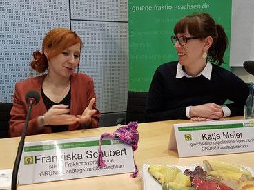 Bild: GRÜNE Fraktion Sachsen