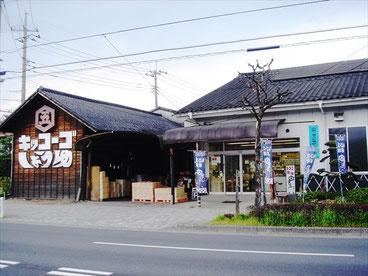 Kondo_Jozo