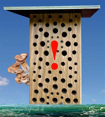 Insektenhotel Nisthilfe Insektennisthilfe Fehler aufstellen aufhängen  insect nesting aid insect hotel mason bee wildbee attachement affixing