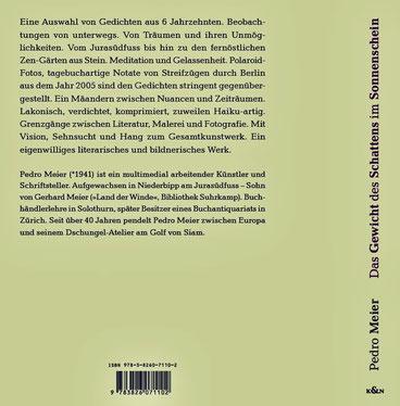 Pedro Meier Schriftsteller – Klappentext zu: Das Gewicht des Schattens im Sonnenschein – Gedichte und Polaroids – ISBN 978-3-8260-7110-2. Buchumschlag. Verlag Königshausen & Neumann, Würzburg. Frankfurter Buchmesse 2020 – BuchCover: Himmel über Berlin