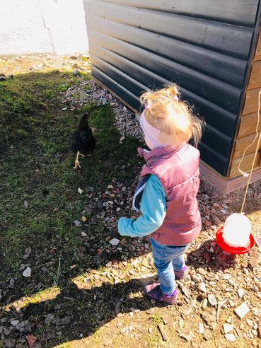 Hütte mit Tieren zum streicheln und Spielplatz