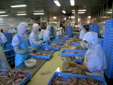 オーニシの工場内の作業の様子