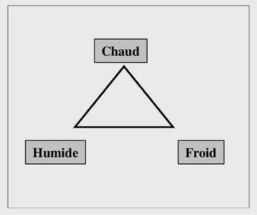 Triangle d'activité cuisine