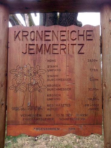 Kroneiche bei Jemmeritz