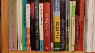 Sabine Rädisch Schriftstellerin Autorin Regensburg Schreibwerkstatt