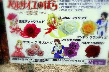 宝塚「花の道」に新しく加わったベルサイユのばらシリーズ。花々の解説を記した立札です。