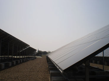 パネルの大きさにビックリ!粛々と太陽の光を電気に変えていきます