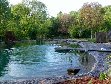 Piscina natural, ecológica, piscina naturalizada
