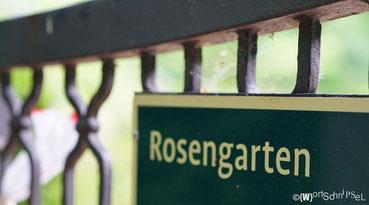 der Rosengarten von Peter Lenné