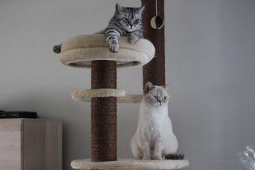 Yadira und Xilly-Dee