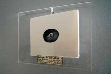 Curiosités des cabinets de Bonnier de la Mosson, illustrées par Alexandre Léger