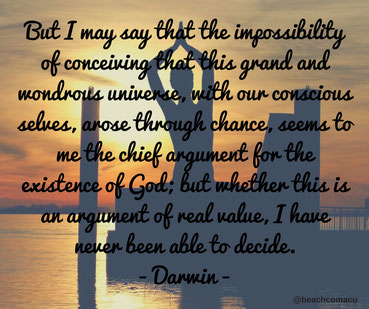 meditating at beach with Darwin quote
