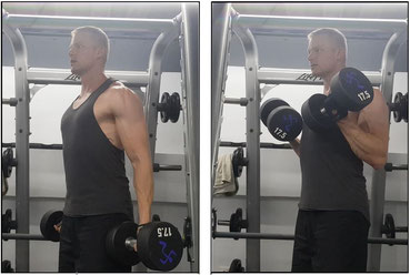 Bicep biceps workout exercise bicep curl hammer curl gym fitness