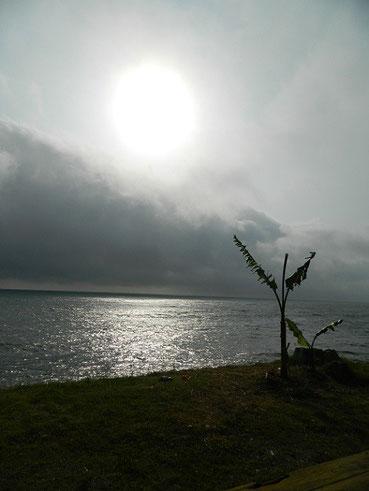 夕方までは雲が厚かった。隙間からの光で海面がキラキラしてましたよ。