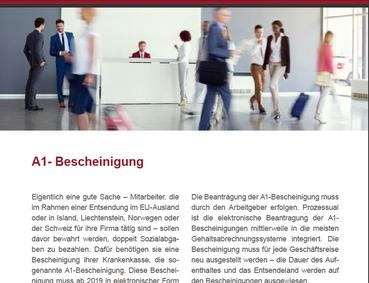 Auszüge aus dem Newsletter von Steinberg und Partner
