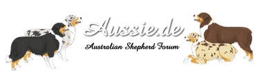 aktives Forum rund um den Aussie
