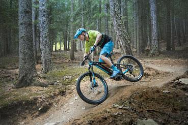 Hardtail e-Bikes 2021