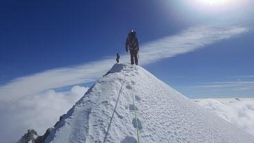 Hochtour, Dent d'Hérens, Gipfelgrat, Gipfel