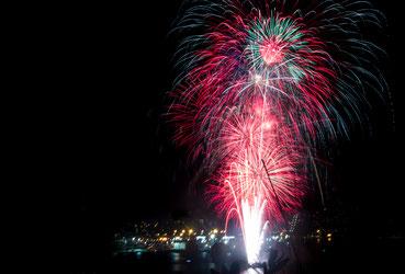 Firework in Wellington