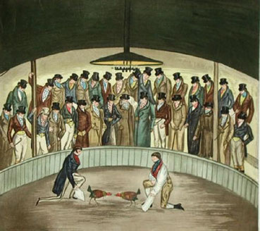 Westminster Cock Pit In 1830 (Restrike Etching) by Henry Alken.  Note the similarity in dress to the picture with the signature of H Alken.