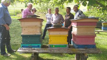 IM Traugott Brandstätter mit seinen Bienenvölkern am Heitzelsberg