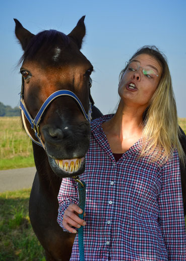 Pferdefotografie Syke Tierfotografie Kontakt