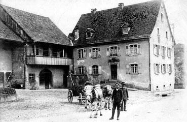 Bild: Hirschen in Holzen, Geschichte