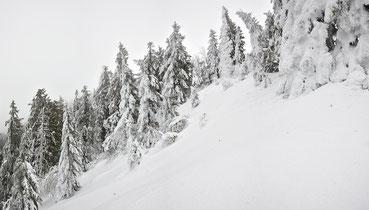 Winterlandschaft am Schwarzwälder Belchen