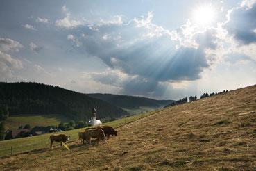 Schwarzwalddorf Urach