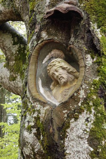 Balzer Herrgott bei Gütenbach im Schwarzwald