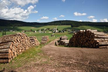 Schwarzwälder Holzlager bei Schollach
