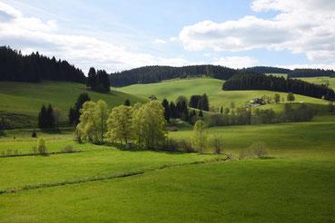 schwarzwaldjostal