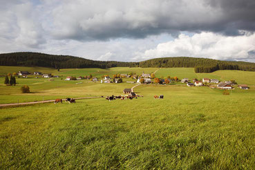Schollach bei Eisenbach im Schwarzwald Herbst