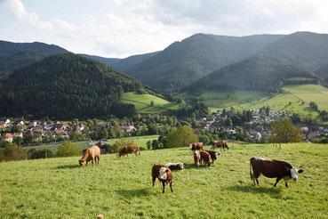 Simonswald im Schwarzwald