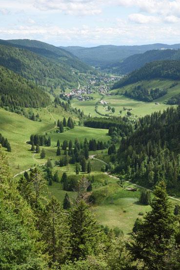 Schwarzwald Menzenschwand