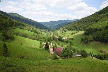 Schwarzwald Obersimonswald