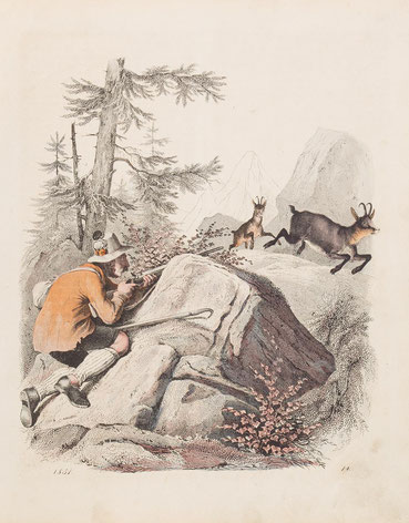 """Die Gemsenjagd aus """"Das Buch der Welt"""", Stuttgart 1851"""