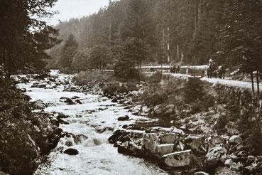 Fuhrmänner beim Holztransport im Schwarzwald um 1910